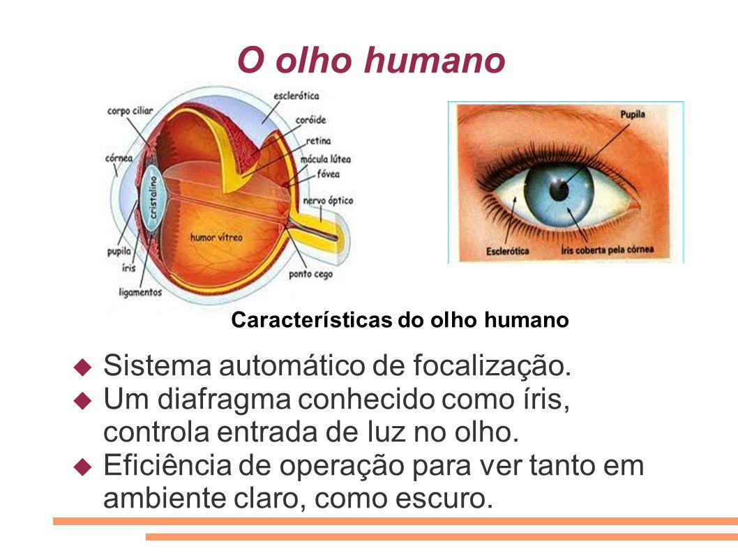 O olho humano  Sistema automático de focalização.  Um diafragma conhecido como íris, controla entrada de luz no olho.  Eficiência de operação para