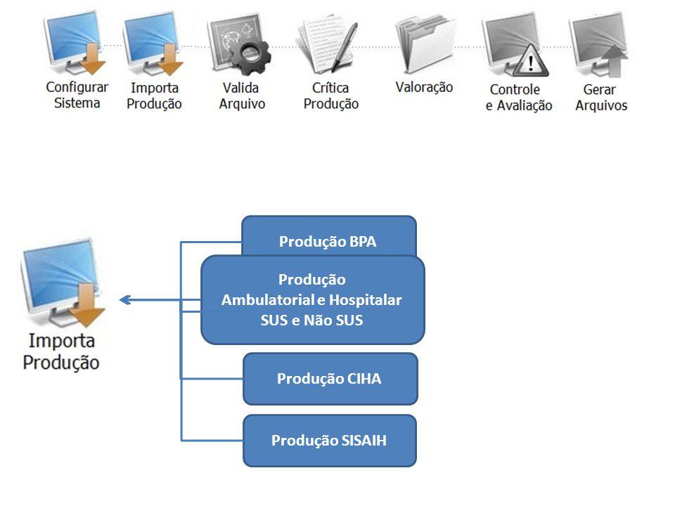 Produção BPA Produção APAC Produção CIHA Produção SISAIH Produção Ambulatorial e Hospitalar SUS e Não SUS