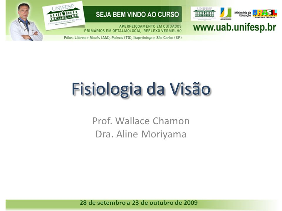 Fisiologia da Visão Prof. Wallace Chamon Dra. Aline Moriyama 28 de setembro a 23 de outubro de 2009