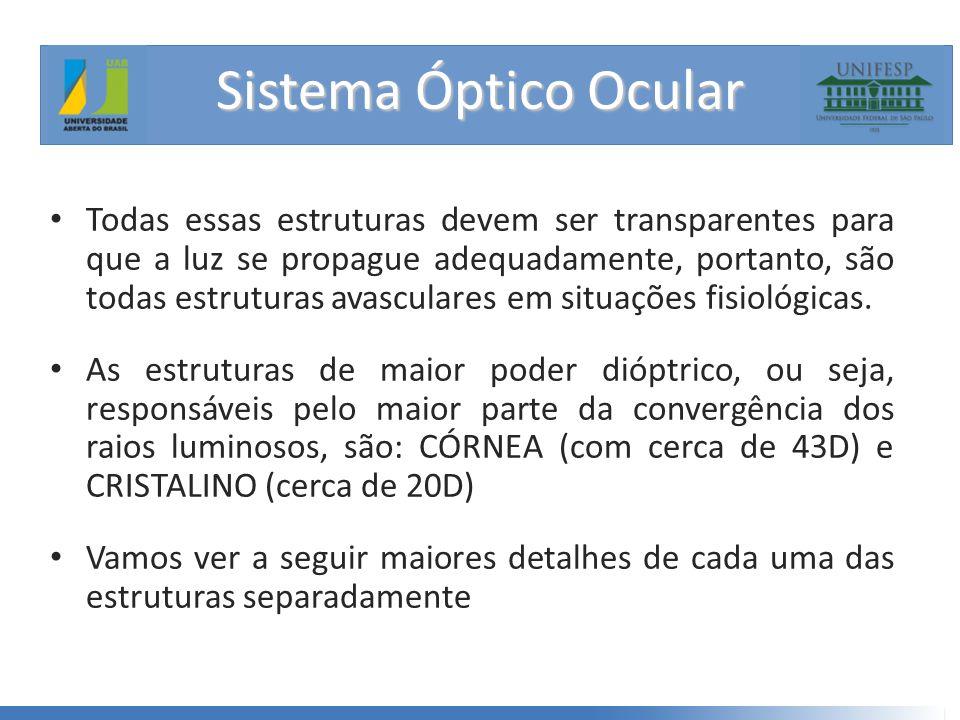 Sistema Óptico Ocular • Todas essas estruturas devem ser transparentes para que a luz se propague adequadamente, portanto, são todas estruturas avasculares em situações fisiológicas.