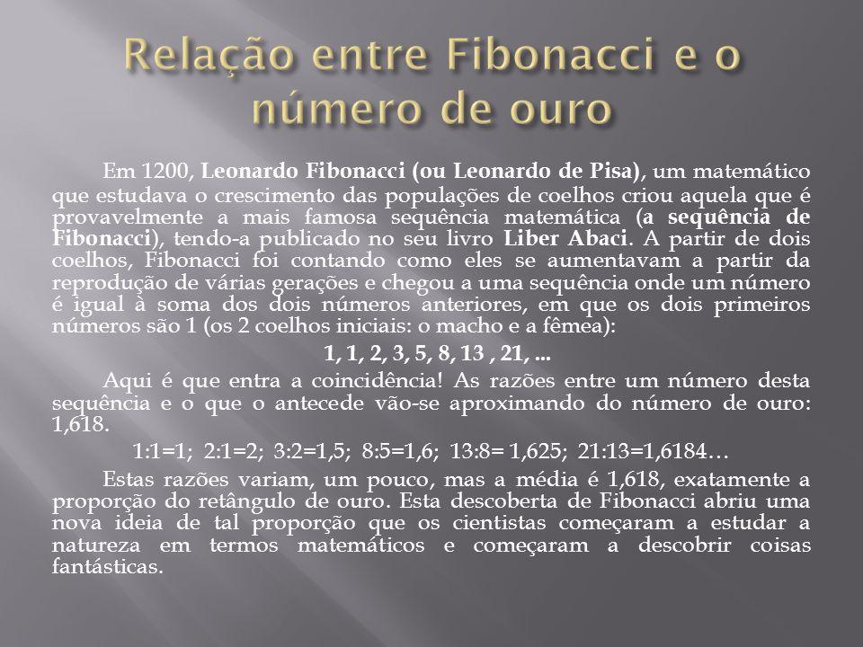 Em 1200, Leonardo Fibonacci (ou Leonardo de Pisa), um matemático que estudava o crescimento das populações de coelhos criou aquela que é provavelmente