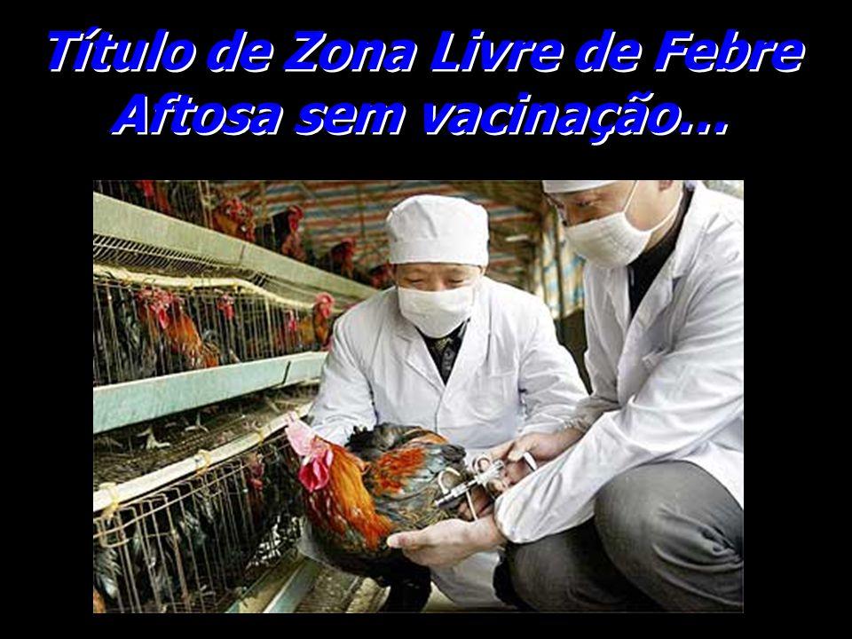 Título de Zona Livre de Febre Aftosa sem vacinação…