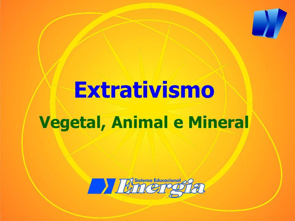 Extrativismo Vegetal, Animal e Mineral