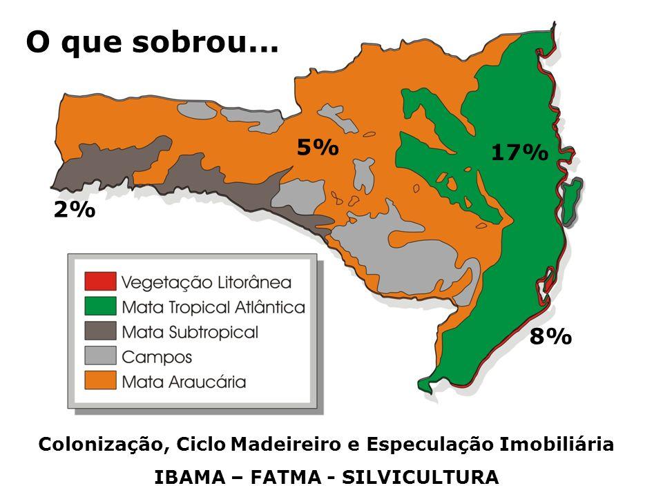 Colonização, Ciclo Madeireiro e Especulação Imobiliária IBAMA – FATMA - SILVICULTURA O que sobrou... 17% 8% 5% 2%