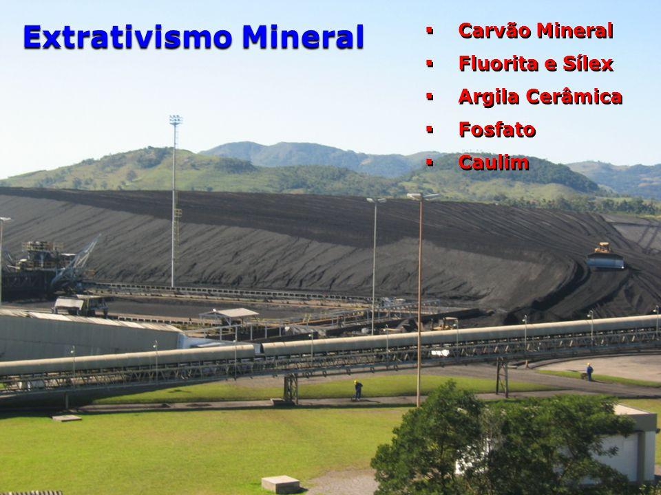 Carvão Mineral  Fluorita e Sílex  Argila Cerâmica  Fosfato  Caulim  Carvão Mineral  Fluorita e Sílex  Argila Cerâmica  Fosfato  Caulim Extr