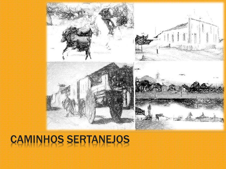 As ricas áreas açucareiras de Bahia e Pernambuco, bem como a região aurífera das Minas Gerais, eram os grandes mercados consumidores da carne bovina.