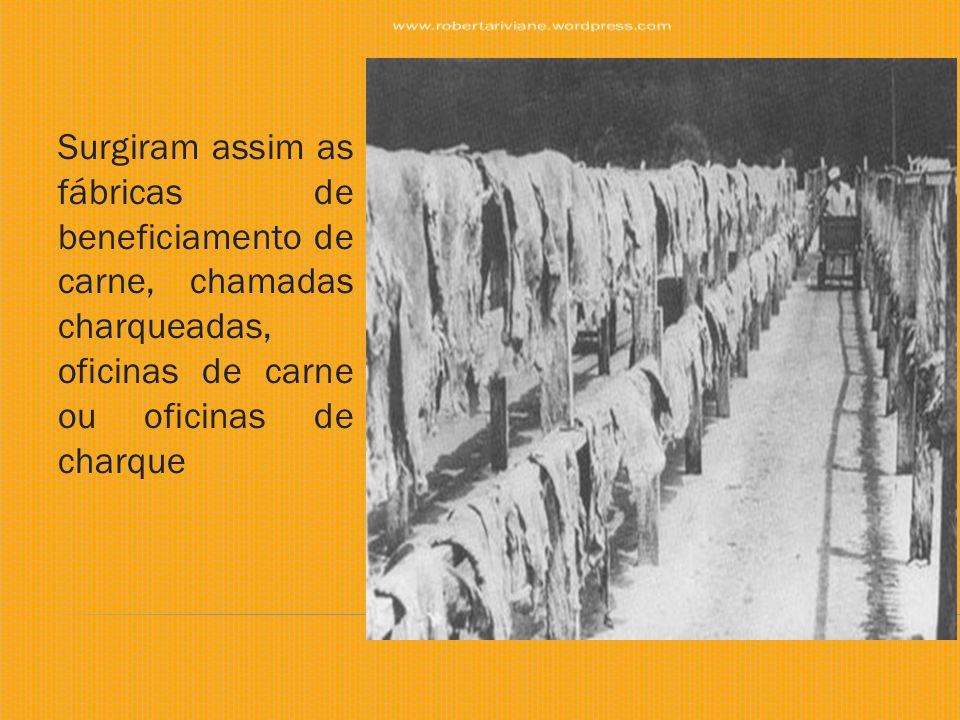 Surgiram assim as fábricas de beneficiamento de carne, chamadas charqueadas, oficinas de carne ou oficinas de charque