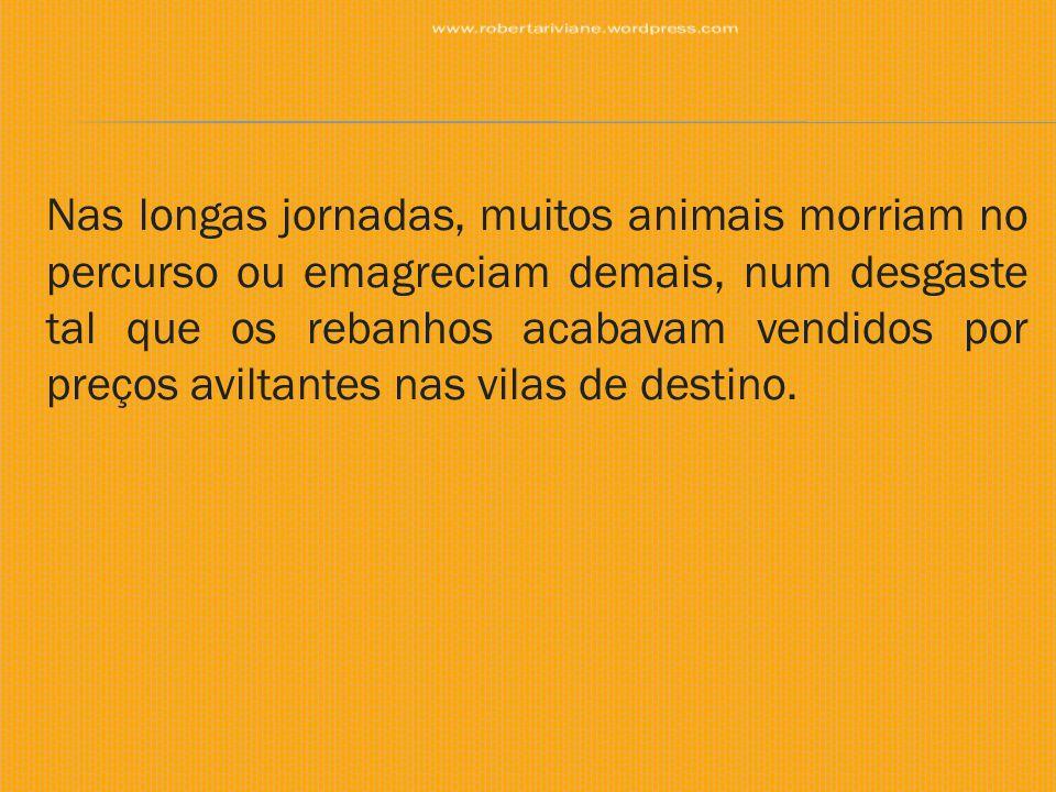 Nas longas jornadas, muitos animais morriam no percurso ou emagreciam demais, num desgaste tal que os rebanhos acabavam vendidos por preços aviltantes