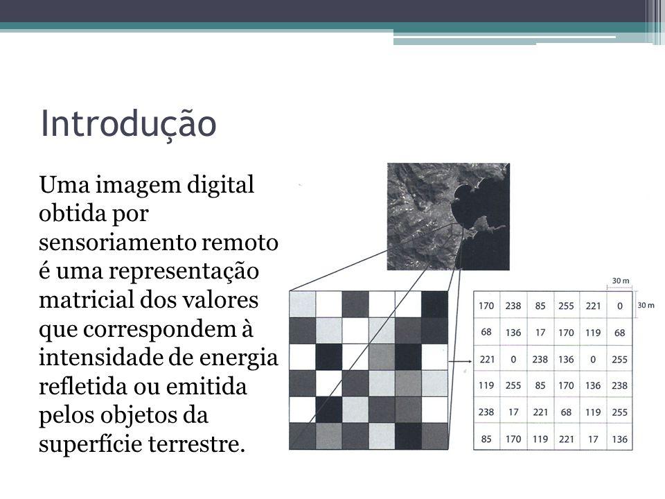 Introdução Uma imagem digital obtida por sensoriamento remoto é uma representação matricial dos valores que correspondem à intensidade de energia refl