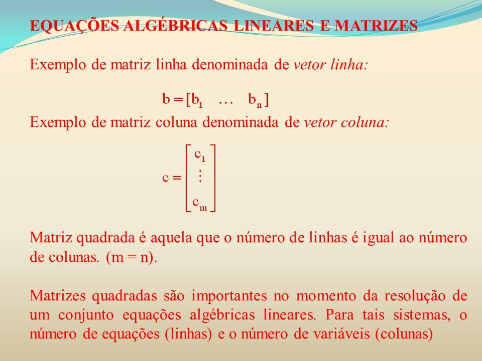 EQUAÇÕES ALGÉBRICAS LINEARES E MATRIZES Exemplo de matriz linha denominada de vetor linha: Exemplo de matriz coluna denominada de vetor coluna: Matriz