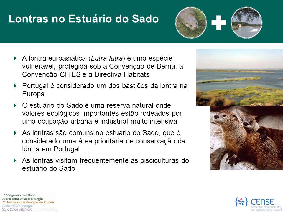 A lontra euroasiática (Lutra lutra) é uma espécie vulnerável, protegida sob a Convenção de Berna, a Convenção CITES e a Directiva Habitats  Portuga