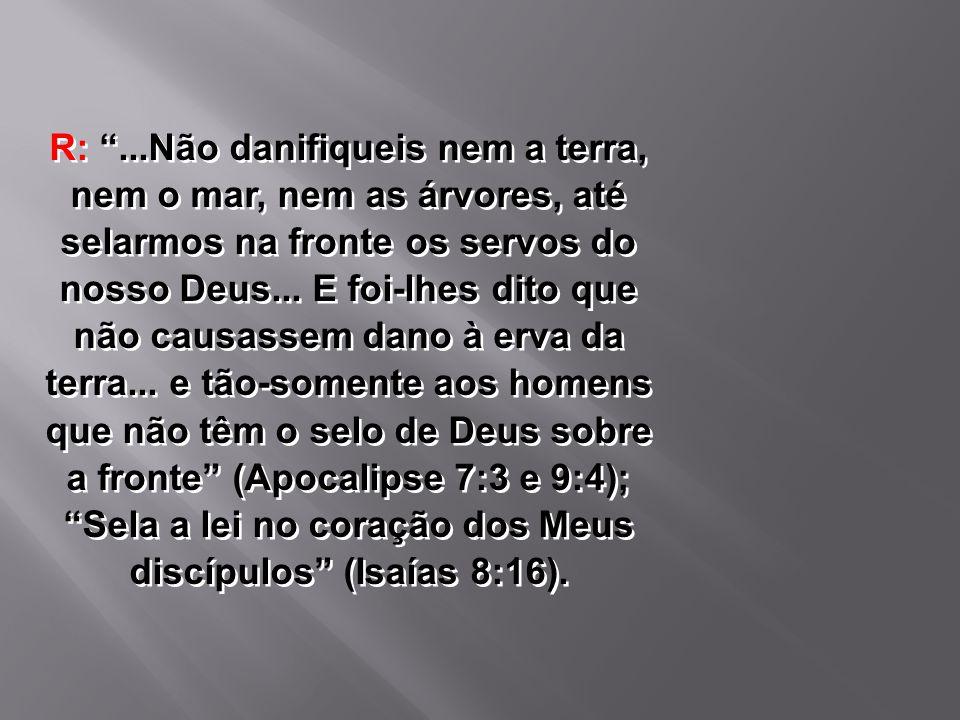 """R: """"...Não danifiqueis nem a terra, nem o mar, nem as árvores, até selarmos na fronte os servos do nosso Deus... E foi-lhes dito que não causassem dan"""