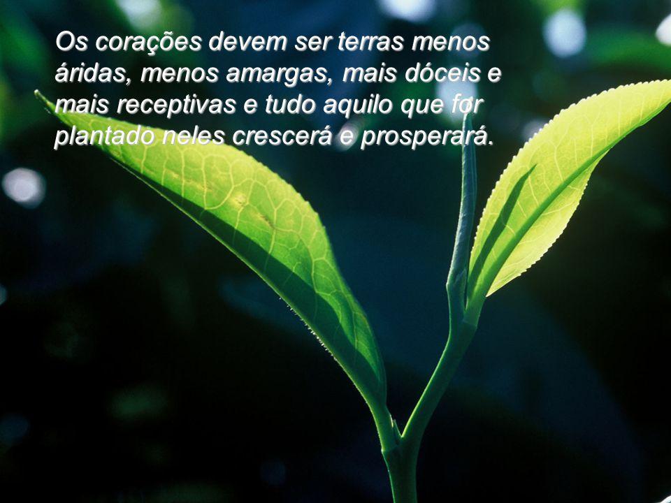 Os corações devem ser terras menos áridas, menos amargas, mais dóceis e mais receptivas e tudo aquilo que for plantado neles crescerá e prosperará.