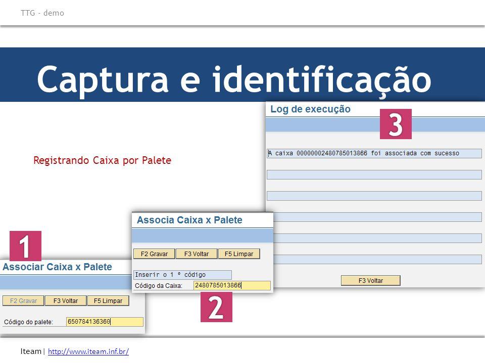 Captura e identificação Iteam| http://www.iteam.inf.br/ http://www.iteam.inf.br/ TTG - demo Registrando Caixa por Palete