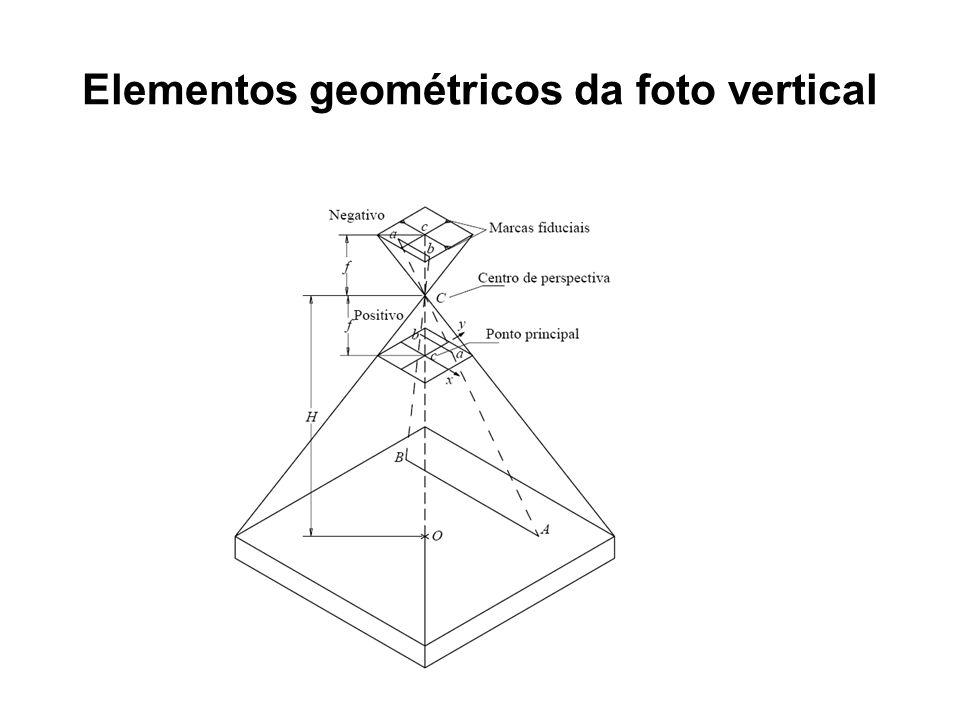 Elementos geométricos da foto vertical