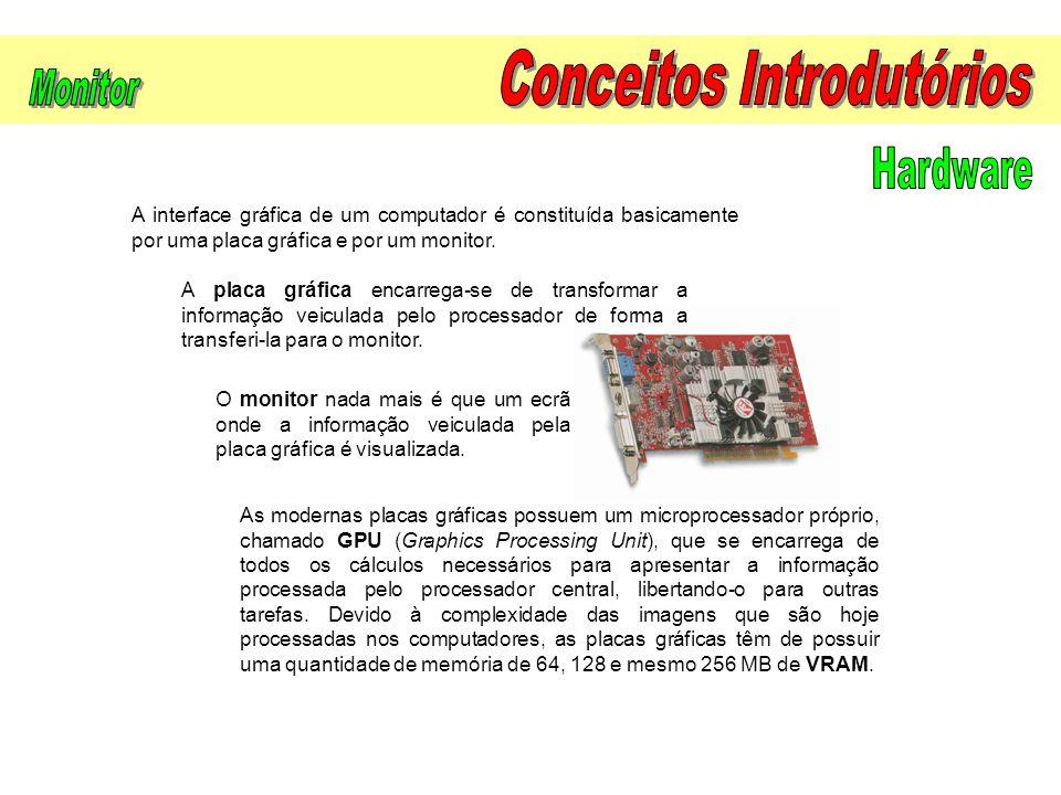 A interface gráfica de um computador é constituída basicamente por uma placa gráfica e por um monitor. A placa gráfica encarrega-se de transformar a i