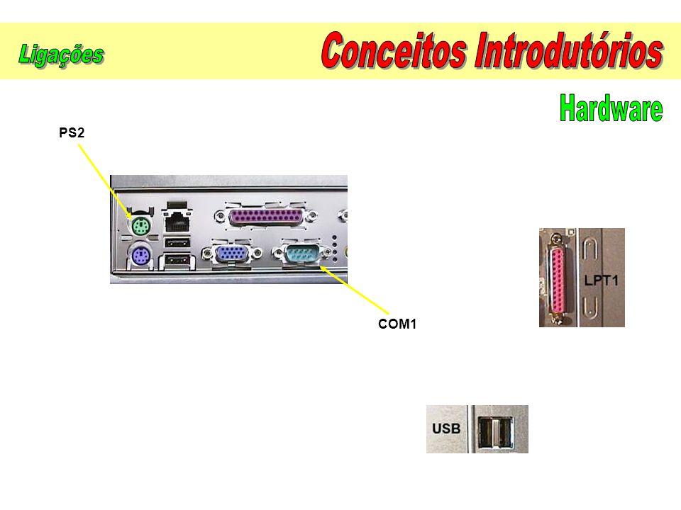 Actualmente, a maioria dos monitores são policromáticos e o seu tamanho expressa-se em polegadas (1 = 2,54 cm).