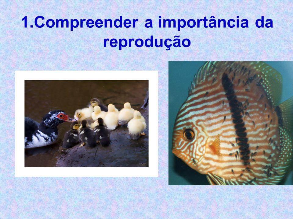 1.Compreender a importância da reprodução