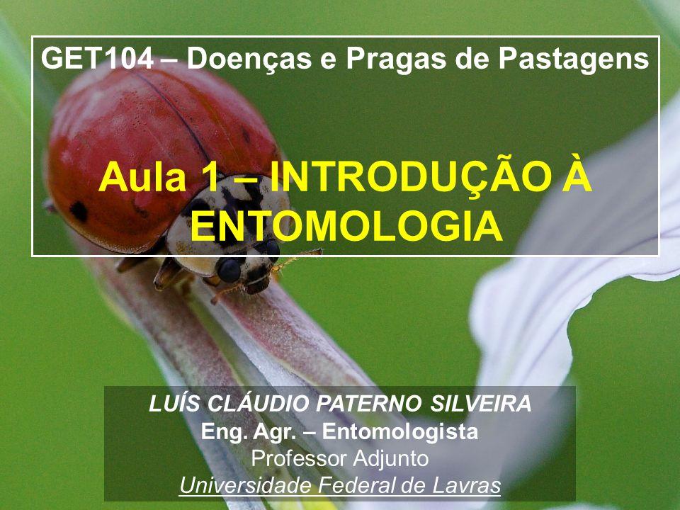 LUÍS CLÁUDIO PATERNO SILVEIRA Eng.Agr.
