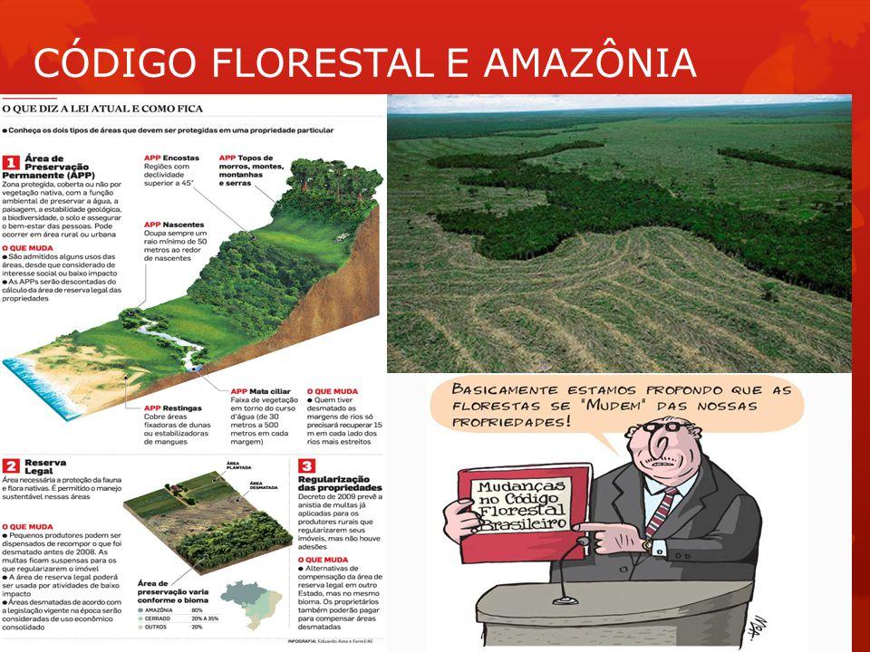 CÓDIGO FLORESTAL E AMAZÔNIA