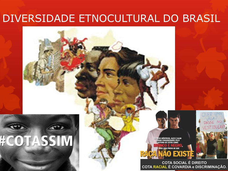DIVERSIDADE ETNOCULTURAL DO BRASIL