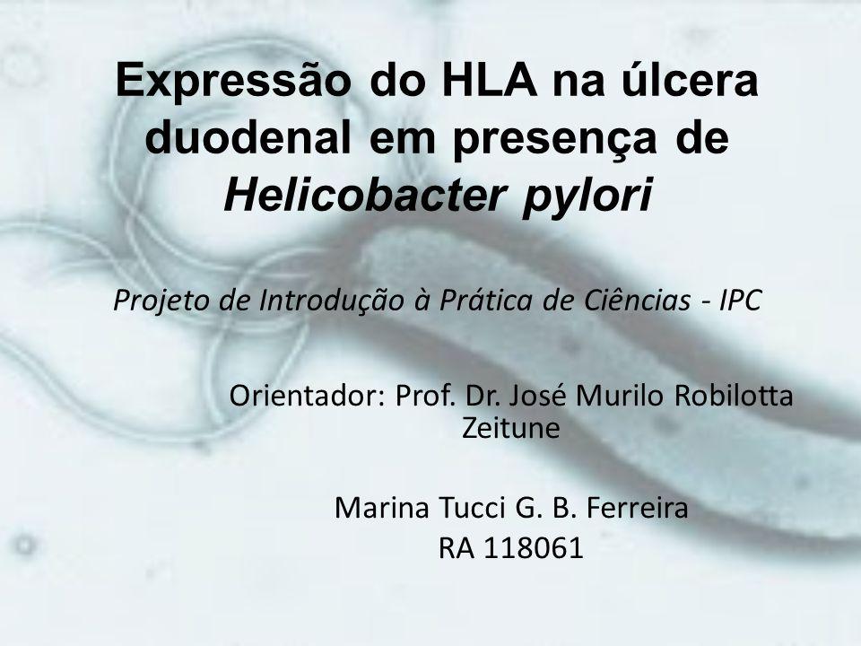 Expressão do HLA na úlcera duodenal em presença de Helicobacter pylori Projeto de Introdução à Prática de Ciências - IPC Orientador: Prof. Dr. José Mu
