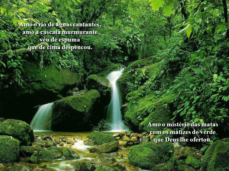 Amo o rio de águas cantantes, amo a cascata murmurante véu de espuma que de cima despencou.