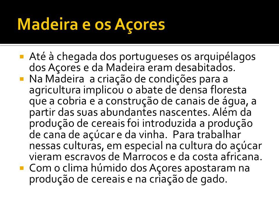  Até à chegada dos portugueses os arquipélagos dos Açores e da Madeira eram desabitados.