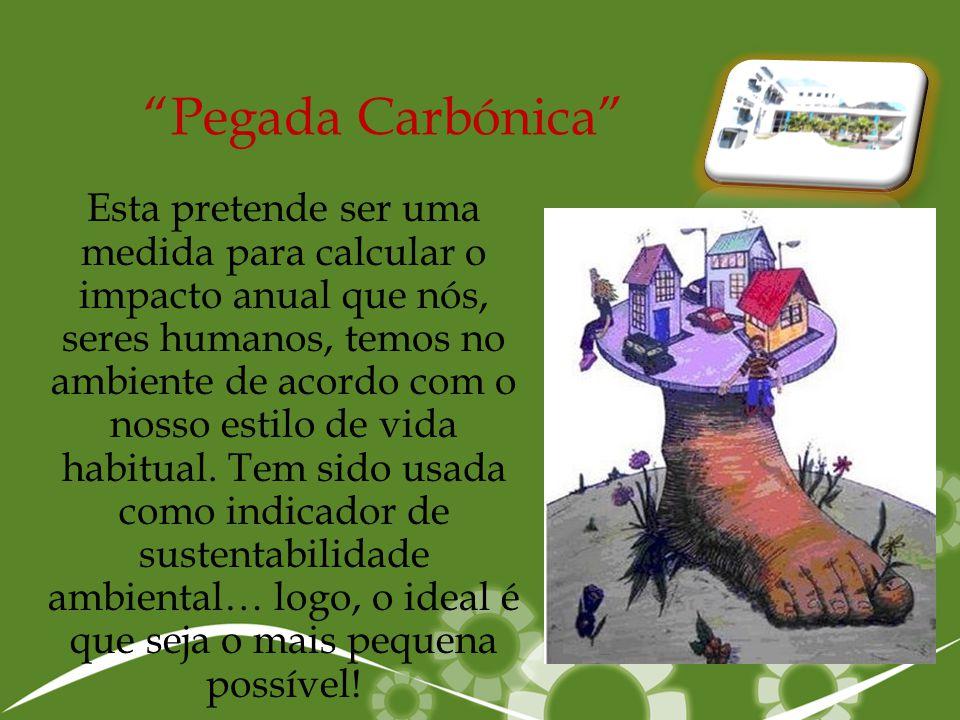 """""""Pegada Carbónica"""" Esta pretende ser uma medida para calcular o impacto anual que nós, seres humanos, temos no ambiente de acordo com o nosso estilo d"""