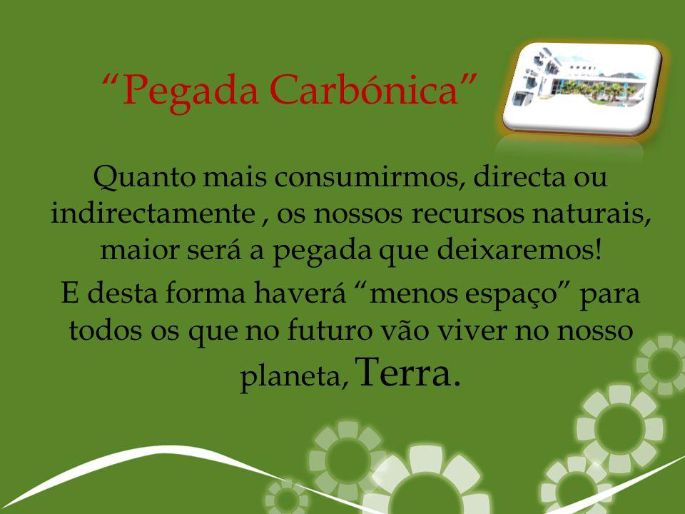 """""""Pegada Carbónica"""" Quanto mais consumirmos, directa ou indirectamente, os nossos recursos naturais, maior será a pegada que deixaremos! E desta forma"""