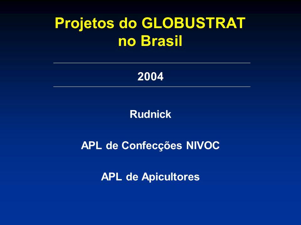 Projetos do GLOBUSTRAT no Brasil 2004 Rudnick APL de Confecções NIVOC APL de Apicultores