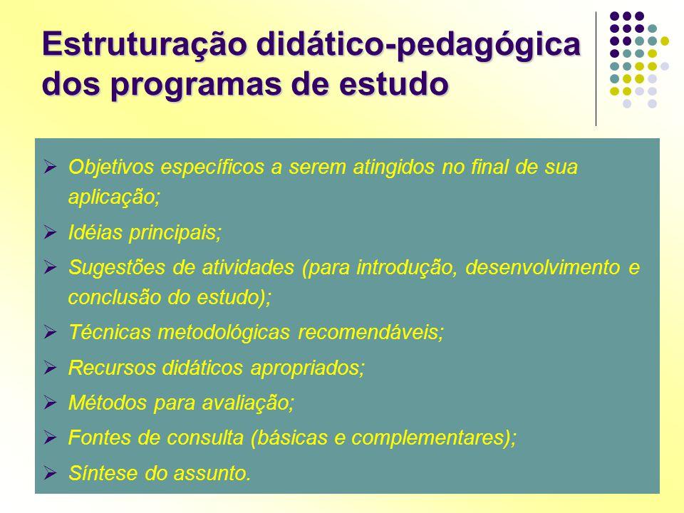 Objetivos específicos a serem atingidos no final de sua aplicação;  Idéias principais;  Sugestões de atividades (para introdução, desenvolvimento