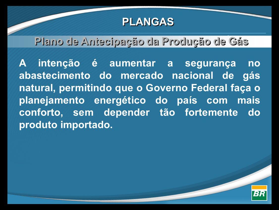 A intenção é aumentar a segurança no abastecimento do mercado nacional de gás natural, permitindo que o Governo Federal faça o planejamento energético