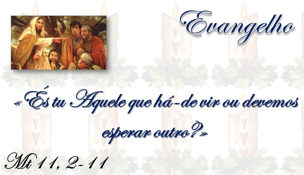 Mt 11, 2-11 «És tu Aquele que há-de vir ou devemos esperar outro?»