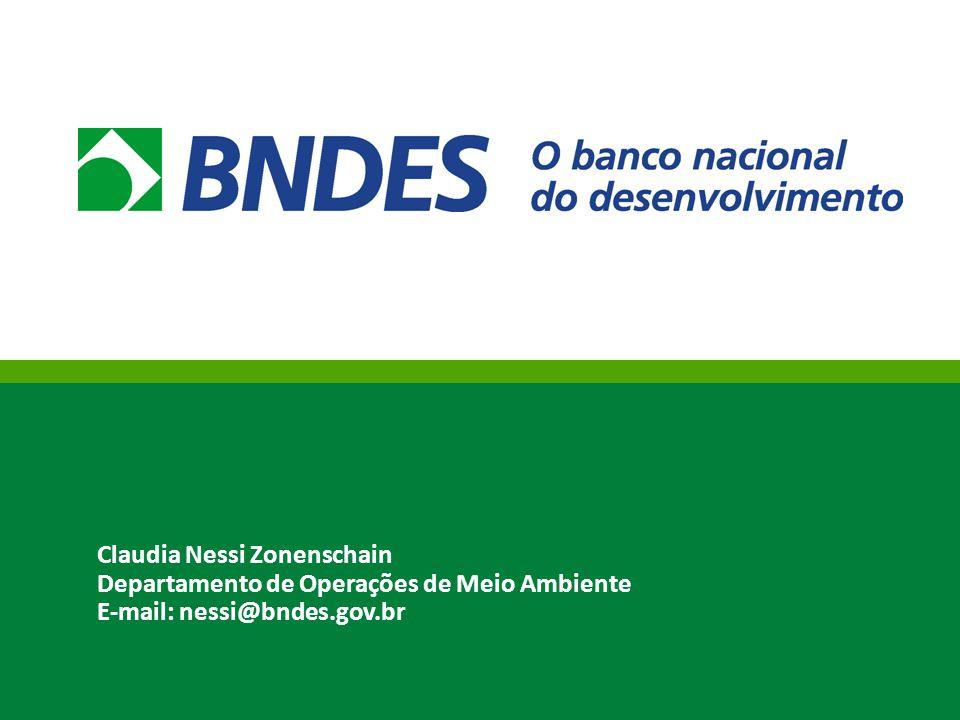 Claudia Nessi Zonenschain Departamento de Operações de Meio Ambiente E-mail: nessi@bndes.gov.br