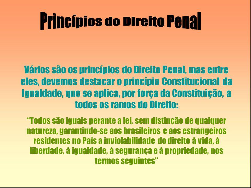 Vários são os princípios do Direito Penal, mas entre eles, devemos destacar o princípio Constitucional da Igualdade, que se aplica, por força da Const