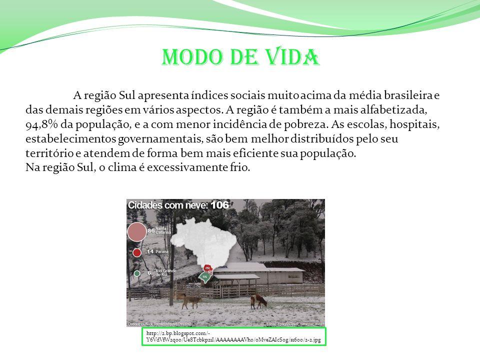 A região Sul apresenta índices sociais muito acima da média brasileira e das demais regiões em vários aspectos.