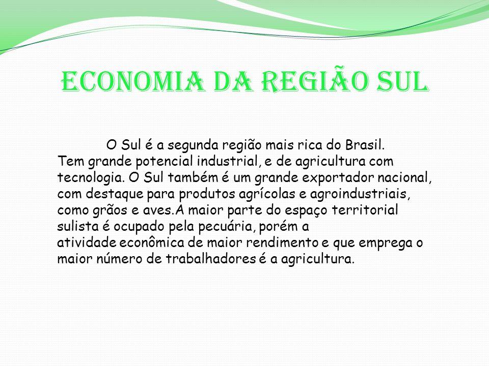 Economia da Região Sul O Sul é a segunda região mais rica do Brasil.