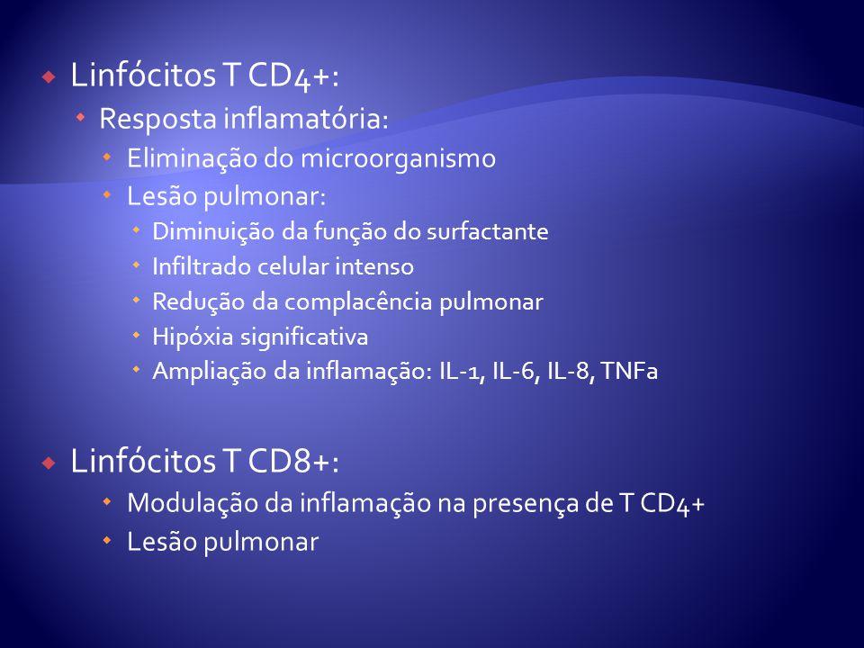  Linfócitos T CD4+:  Resposta inflamatória:  Eliminação do microorganismo  Lesão pulmonar:  Diminuição da função do surfactante  Infiltrado celular intenso  Redução da complacência pulmonar  Hipóxia significativa  Ampliação da inflamação: IL-1, IL-6, IL-8, TNFa  Linfócitos T CD8+:  Modulação da inflamação na presença de T CD4+  Lesão pulmonar