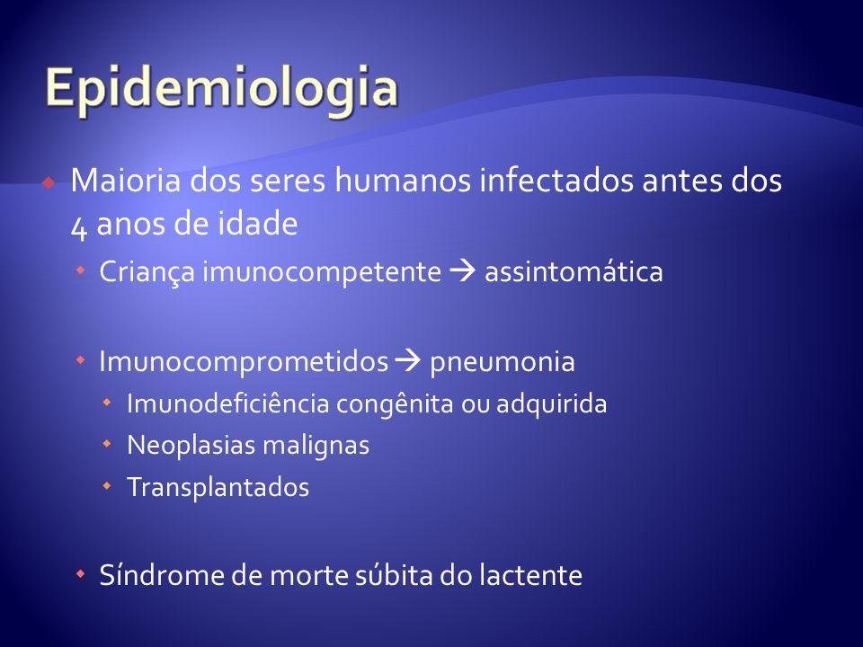 Maioria dos seres humanos infectados antes dos 4 anos de idade  Criança imunocompetente  assintomática  Imunocomprometidos  pneumonia  Imunodeficiência congênita ou adquirida  Neoplasias malignas  Transplantados  Síndrome de morte súbita do lactente