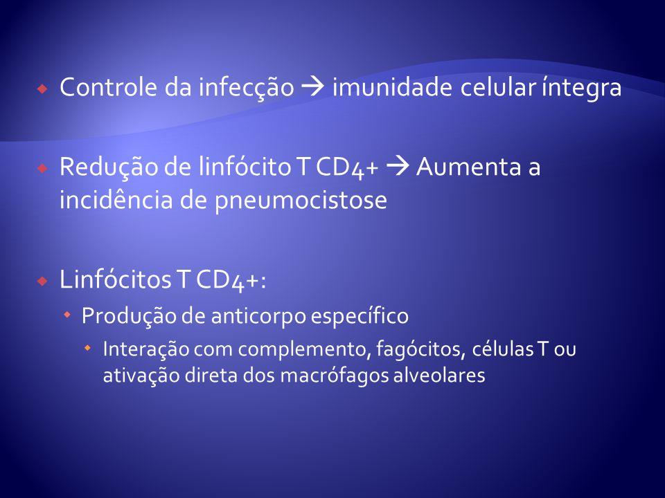  Controle da infecção  imunidade celular íntegra  Redução de linfócito T CD4+  Aumenta a incidência de pneumocistose  Linfócitos T CD4+:  Produção de anticorpo específico  Interação com complemento, fagócitos, células T ou ativação direta dos macrófagos alveolares