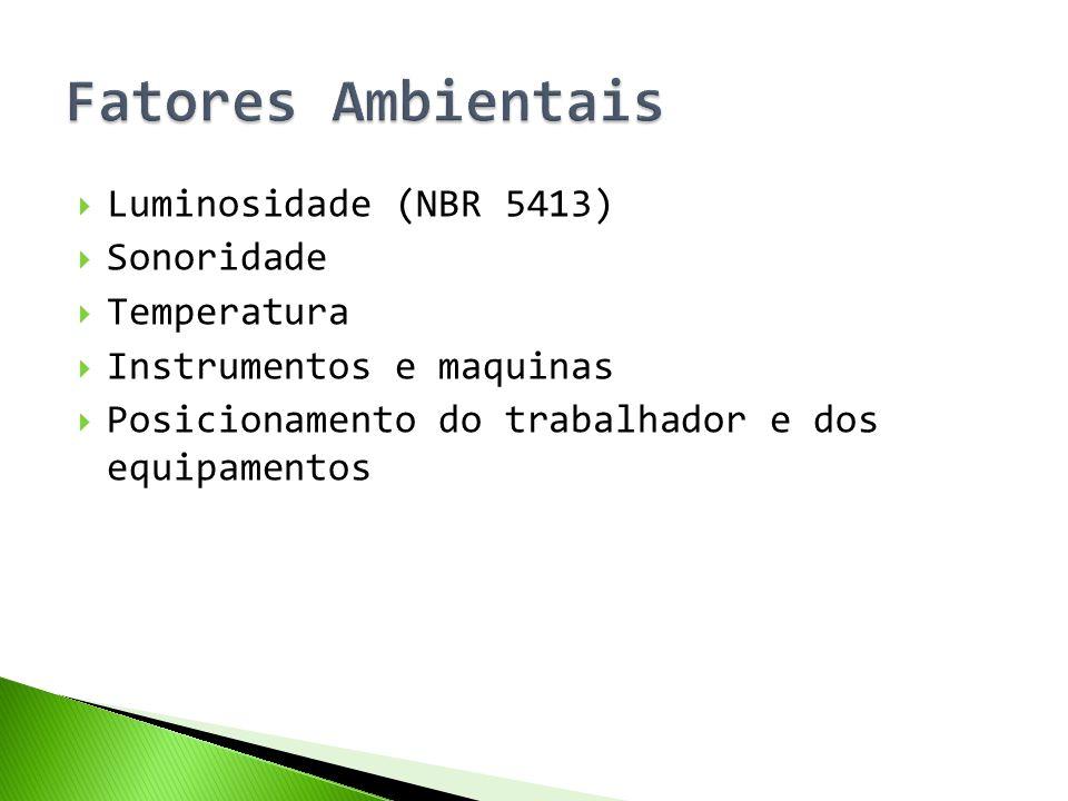  Luminosidade (NBR 5413)  Sonoridade  Temperatura  Instrumentos e maquinas  Posicionamento do trabalhador e dos equipamentos