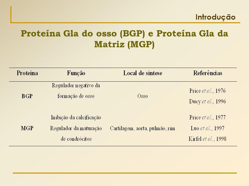Introdução Proteína Gla do osso (BGP) e Proteína Gla da Matriz (MGP)