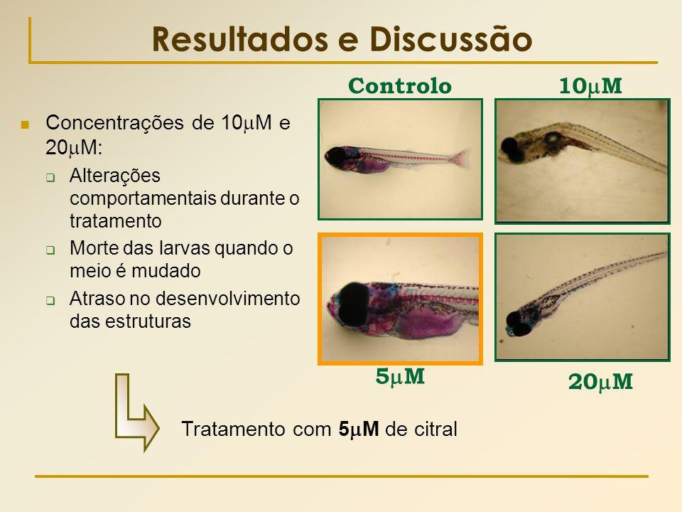 Resultados e Discussão  Concentrações de 10  M e 20  M:  Alterações comportamentais durante o tratamento  Morte das larvas quando o meio é mudado