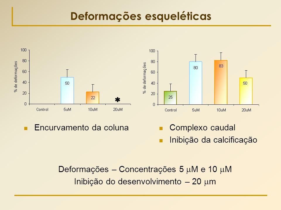 Deformações esqueléticas  Encurvamento da coluna Deformações – Concentrações 5  M e 10  M Inibição do desenvolvimento – 20  m  Complexo caudal 