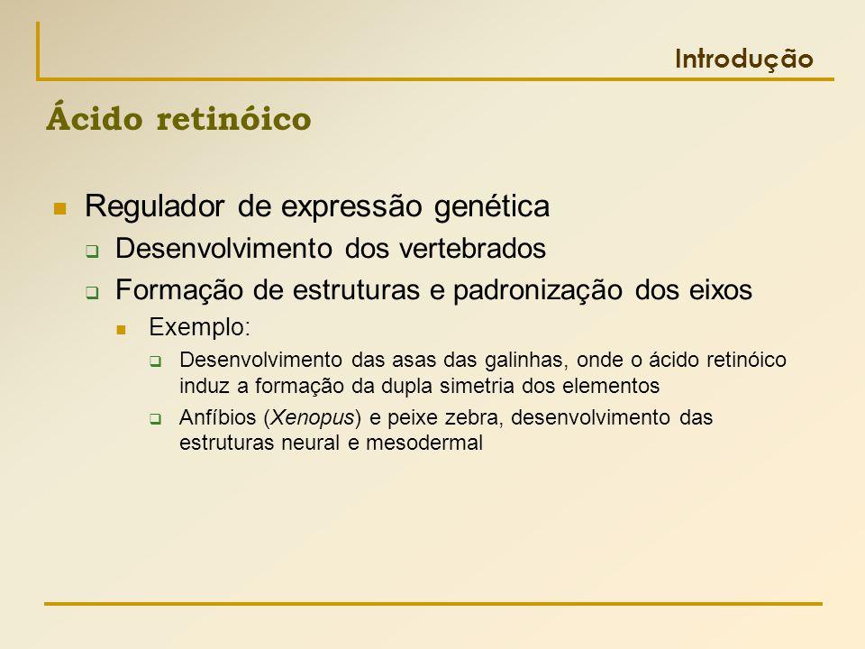  Regulador de expressão genética  Desenvolvimento dos vertebrados  Formação de estruturas e padronização dos eixos  Exemplo:  Desenvolvimento das
