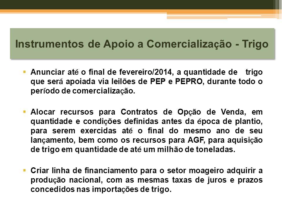Instrumentos de Apoio a Comercializa ç ão - Trigo  Anunciar at é o final de fevereiro/2014, a quantidade de trigo que ser á apoiada via leilões de PE