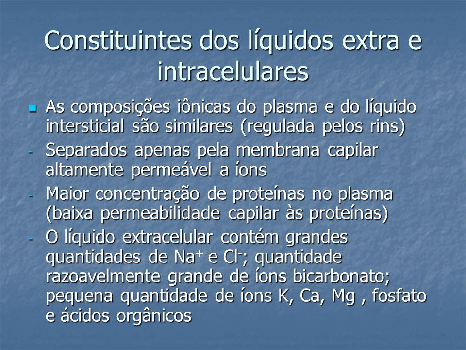 Constituintes dos líquidos extra e intracelulares  As composições iônicas do plasma e do líquido intersticial são similares (regulada pelos rins) - S