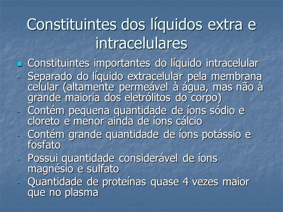 Constituintes dos líquidos extra e intracelulares  Constituintes importantes do líquido intracelular - Separado do líquido extracelular pela membrana