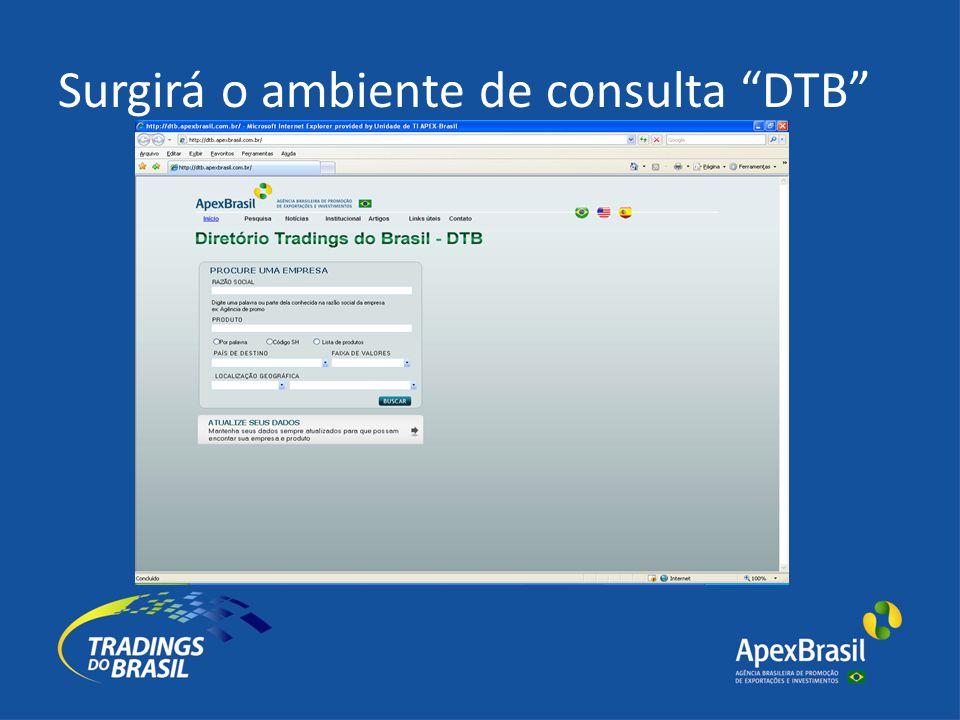 Surgirá o ambiente de consulta DTB